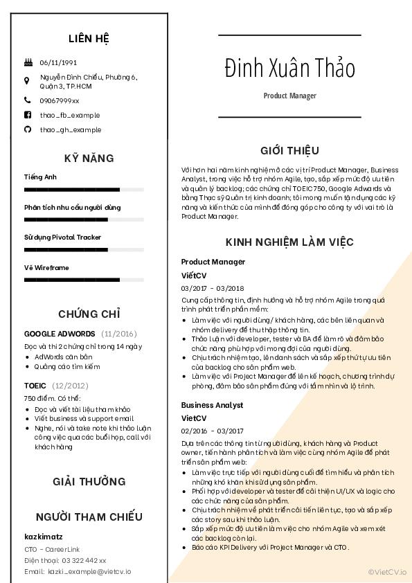 Mẫu CV Tinh tế 2