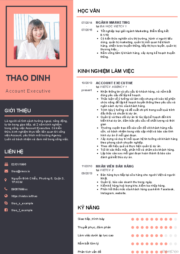 CV tham khảo Account Executive